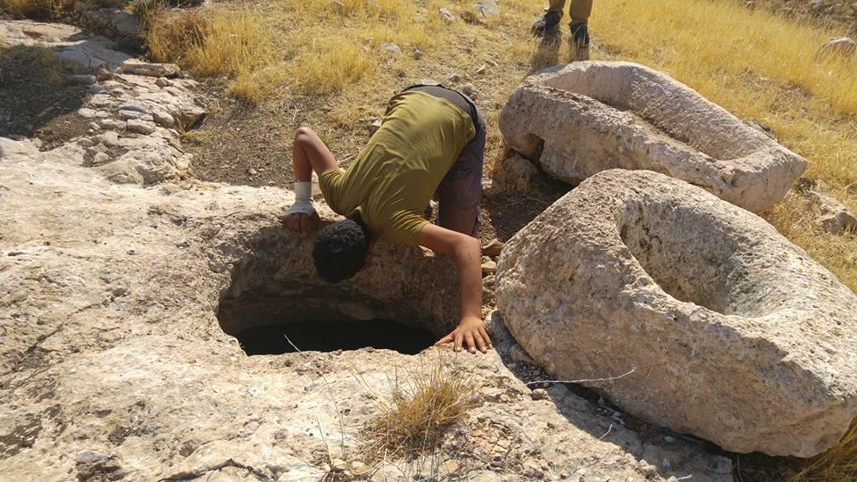 Shulman-Bi'r al-'Id. July 11 2015